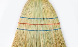 Balkan broom